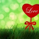 Liebeserklärung machen